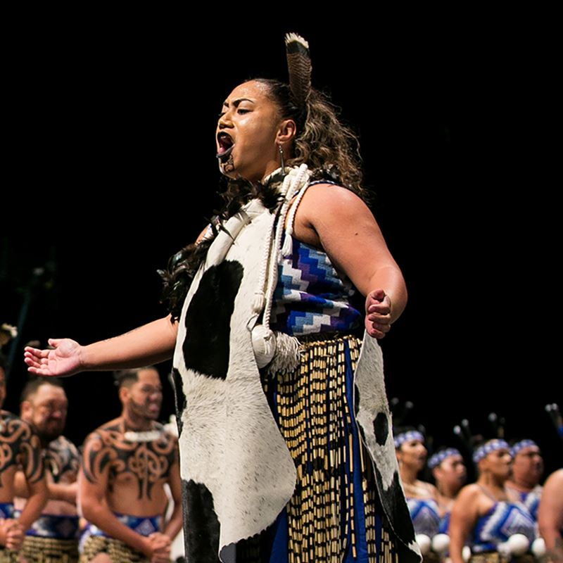 Bachelor of Māori Performing Arts